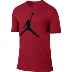 Iconic Jumpman Logo